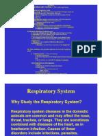 Lect4 Respiratory