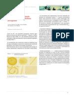 Importância Da Monitorização de Cianobactéria Em Albufeiras Portuguesas