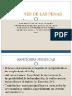 Fines de Las Penas- 2011(1)
