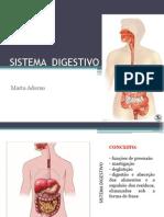 Aula 12 Sistema Digestorio