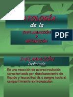 inflamacion patologia