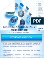 economia ambiental y mtodos de valorizacin-130721214214-phpapp02