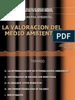 20120110valdelmedioambiente-120223163506-phpapp01