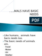 Animals Have Basic Needs