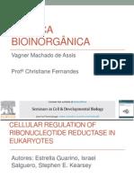 Química Bioinorgânica