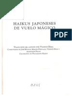 Haikus de Vuelo Mágico