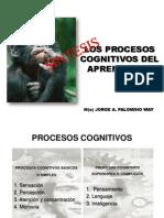 resumen procesos cognitivos