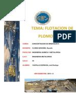 Flotacion de Plomo y Zinc