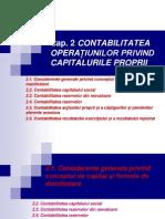 Curs CFI 2 Capitaluri