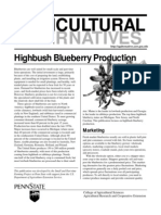 Highbush Blueberry Economics
