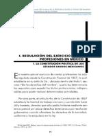 Reglamento de Profesiones