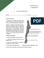 guía macroformas chileno