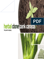 Herbal Clone Bank Canada Inc. - Company Presentation