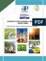 Diagnostico Socio Economico Laboral Region Tumbes