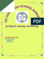 Bargaon School