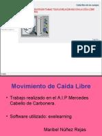 Presentación1.pptcaida