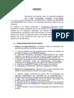 PUENTESJP.docx