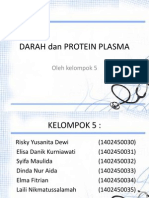 Darah Dan Protein Plasma