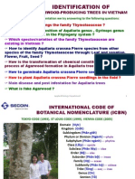 Identification of Agarwood-producing trees (summary)