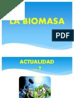 Bio Masa 2012