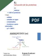 242073322 07 Aminoacidos y Proteinas Pptx