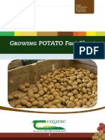GrowingPotato.pdf