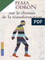 Chodron Pema - Sur Le Chemin de La Transformation