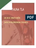 Fauna Tla 1