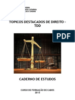 2013_09_01_-_TDD_-_Caderno_de_Estudos