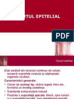 Epitelial Curs 1
