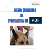 otohematoma1.pdf