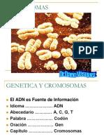 KroMosomas