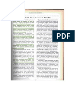 Musculos PDF