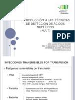 1-Introduccion a la metodologia NAT - Dra Liliana Di Tullio Budassi 04-08-2010.pdf