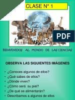 CLASE 1  LOS ANIMALES Y SU CLASIFICACIÓN PLANIF UNID 1 CIENCIAS 2° BÁSICO