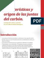 Características y Origen de Las Juntas Del Carbón