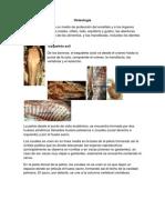 Unidad 2 Osteologia Artrologia Miologia