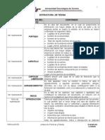 D-Acad-010 Estructura de Tesina Con Observaciones