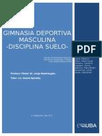 gimansia_deportiva_masculina