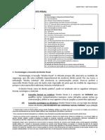 direito penal - 1 - introdução ao direito penal.pdf