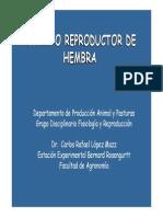 Aparato Reproductor Hembra