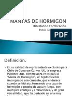 Disertacion Mantas de Hormigon
