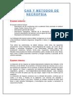 Tecnicas y Metodos de Necropsia