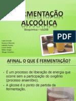 fermentacão alcoolica