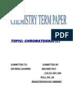 10800597_Term Paper