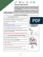 Protocole expérimental - Protéines et génétique