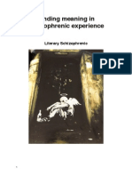 Finding Meaning in Schizophrenic Experience
