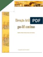 Elevação Artificial Por Gas-lift Contínuo – Galileu Paulo Henke Alves de Oliveira - 2004