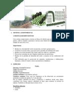 Sistema Agroforestal