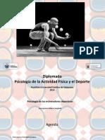 PUCV PAFD - Diplomado - 27.09 (1).ppt